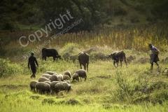 Bauern 2014 - PERU5503